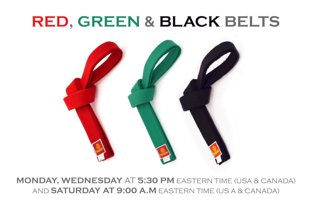 Red, green and black belt online classes